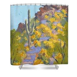 Sonoran Springtime Shower Curtain