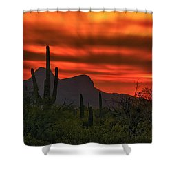 Shower Curtain featuring the photograph Sonoran Sunset H38 by Mark Myhaver