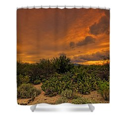 Shower Curtain featuring the photograph Sonoran Sunset H4 by Mark Myhaver