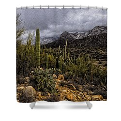 Shower Curtain featuring the photograph Sonoran Winter No.3 by Mark Myhaver
