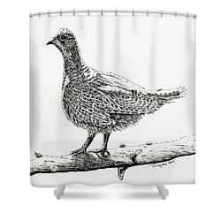 Sooty Grouse Shower Curtain