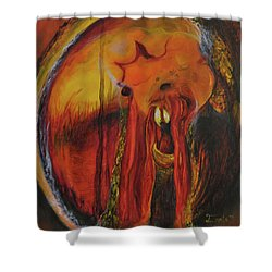Sorcerer's Gate Shower Curtain by Christophe Ennis