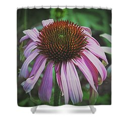 Shower Curtain featuring the photograph Sorrow by Karen Stahlros