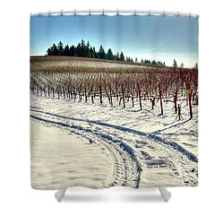 Soter Vineyard Winter Shower Curtain by Jerry Sodorff