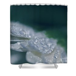 Shower Curtain featuring the photograph Soul Blossoms  by Sharon Mau