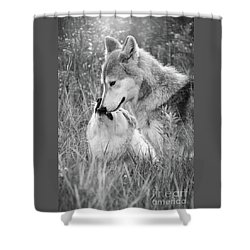 Soul Mates Black And White Shower Curtain