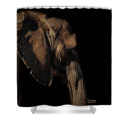 Soul Of The Planet Shower Curtain