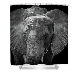 Soul Of The Planet, No. 11 Shower Curtain