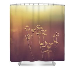 Shower Curtain featuring the photograph Souls Of Glass by Shane Holsclaw