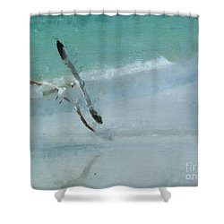 Sound Of Seagulls Shower Curtain by Claire Bull