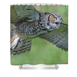 Sounding Out Shower Curtain