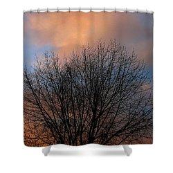 Sounds Shower Curtain