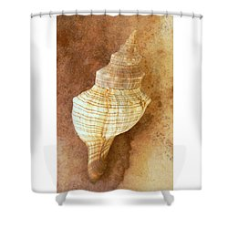 Sounds Of The Sea Shower Curtain by Holly Kempe