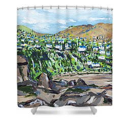 South African Coastline Part One Shower Curtain