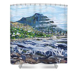 South African Coastline Part Three Shower Curtain