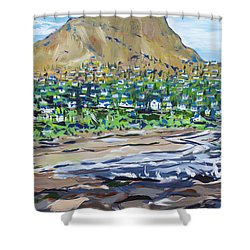 South African Coastline Part Two Shower Curtain