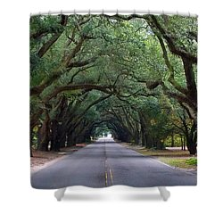 South Boundry Shower Curtain by Skip Willits