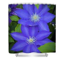 South Carolina Color Shower Curtain