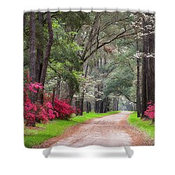 South Carolina Lowcountry Spring Flowers Dirt Road Edisto Island Sc Shower Curtain