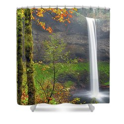 South Falls On A Drizzly Day Shower Curtain by David Gn