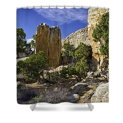 South Of Pryors 17 Shower Curtain