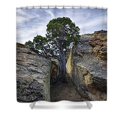 South Of Pryors 2 Shower Curtain