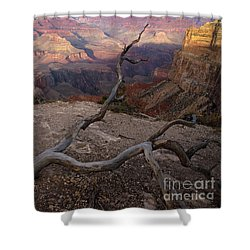 South Rim Golden Hour Shower Curtain