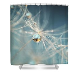Shower Curtain featuring the photograph South Sea Pearl by Amy Tyler