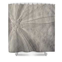 South Walton Currency  Shower Curtain