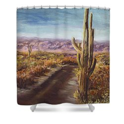 Shower Curtain featuring the painting Southern Arizona by Jack Skinner