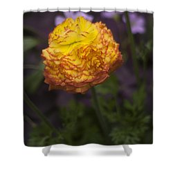 Southern Belle Shower Curtain by Morris  McClung