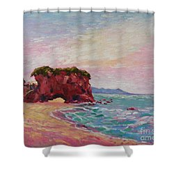 Southern Coast Shower Curtain