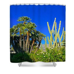 Southern France Beauty Shower Curtain