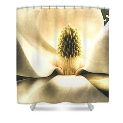 Southern Grace Shower Curtain