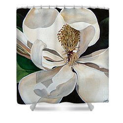Southern Lady    Sold Shower Curtain