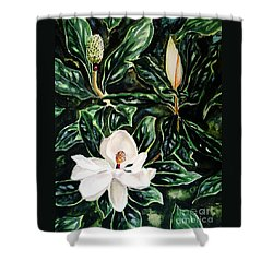 Shower Curtain featuring the painting Southern Magnolia Bud And Bloom by Patricia L Davidson
