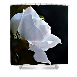Southern Magnolia Profile Shower Curtain