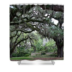 Southern Mist Shower Curtain by David and Lynn Keller