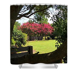 Southern Radiance  Shower Curtain