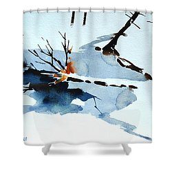 Shower Curtain featuring the painting Southern Vermont Roadside Runoff by Len Stomski