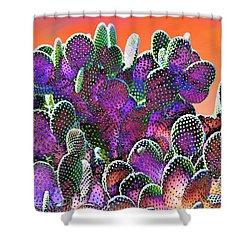 Southwest Desert Cactus Shower Curtain