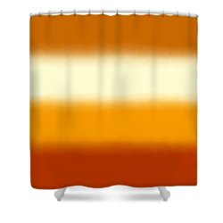 Southwest Desert - Sq Block Shower Curtain