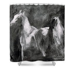 Shower Curtain featuring the painting Southwest Horse Sketch by Frances Marino