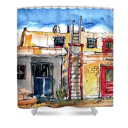 Southwestern Home Shower Curtain by Terry Banderas