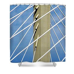 Span Shower Curtain