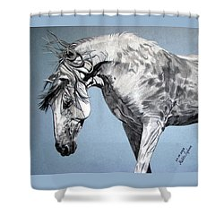 Spanish Horse Shower Curtain by Melita Safran