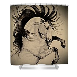 Spanish Horses Shower Curtain by Cheryl Poland