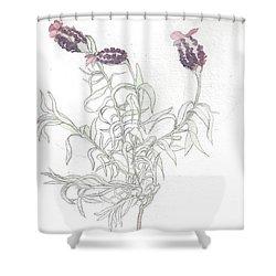 Spanish Lavender Shower Curtain