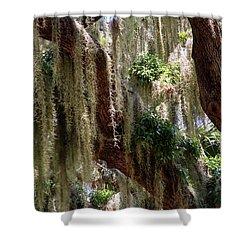 Spanish Moss Cascade Shower Curtain