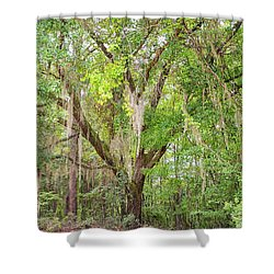 Spanish Moss Shower Curtain